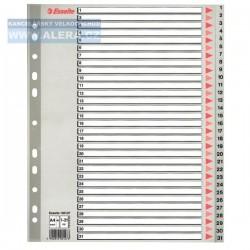 Zboží na objednávku - Rozřaďovač A4+ 1-31 listů plastový šedý Esselte 100127