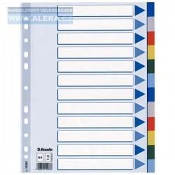 Zboží na objednávku - Rozřaďovač A4 2x6 listů barevný plast Esselte 15262