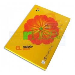 Papír Rhea CS1 A4 140gr 100listů matný