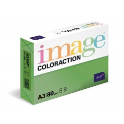 Zboží na objednávku - Papír COLORACTION A3 80g/500 Dublin tmavě zelená DG47
