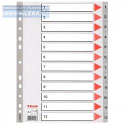 Zboží na objednávku - Rozřaďovač A4 1-12 listů plastový Esselte 100106