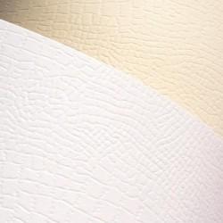 Papír Galerie Standart A4/220gr.20 listů Borneo ivory