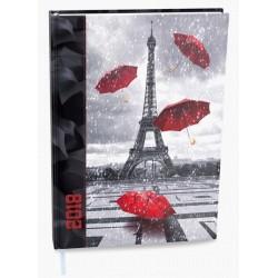 Diář.21 BDD9 David - lamino - denní Eiffelovka A5 143x205